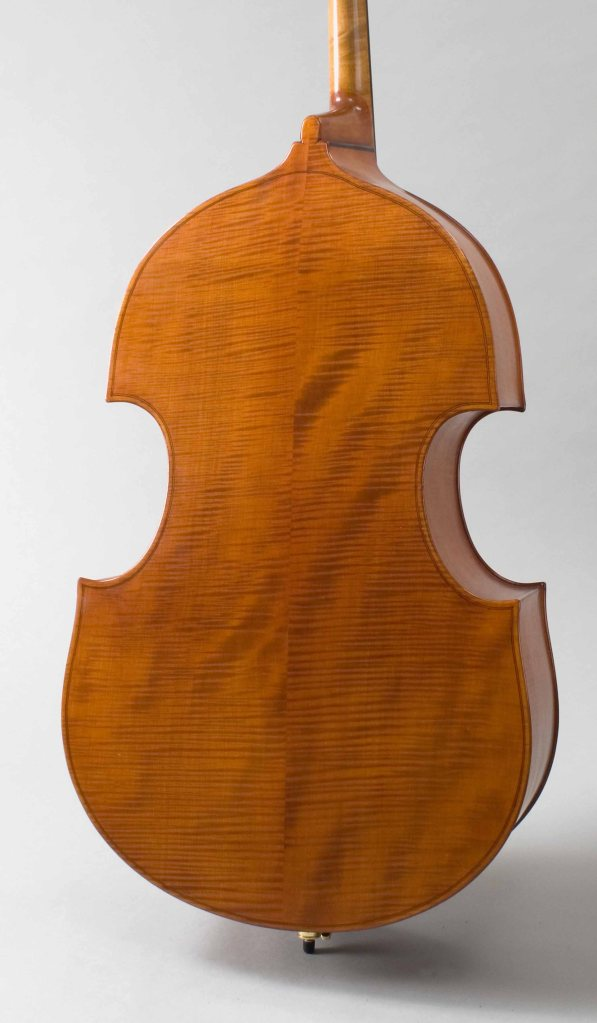 Lavicka bass - rear view
